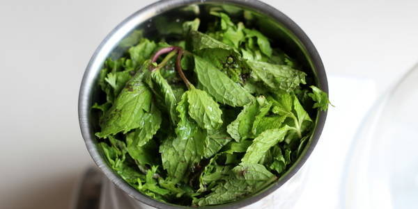 mint chutney add mint leaves